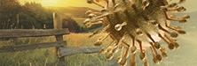 Evolving HCV Care: A Primer for Rural Clinicians